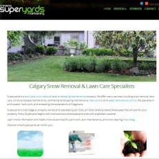 A snapshot of Superyards website