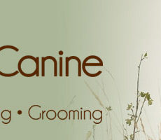 RaisingCanine-Banner