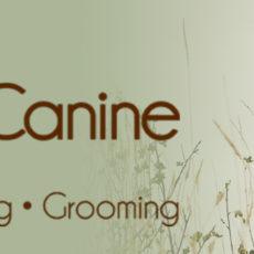 RaisingCanine-Banner-Large