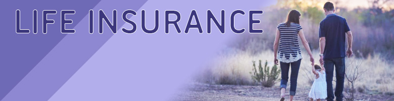 Banner graphic for Life Insurance business listings page.