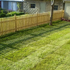 Lawn Care Services in Calgary and Edmonton