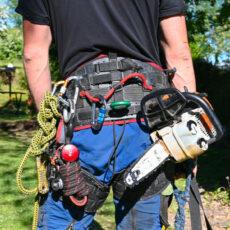 arborist-equipment.jpg